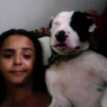 Laica Tavares Cardoso