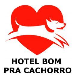Hotel para cães em Campo Grande MS Bom pra Cachorro
