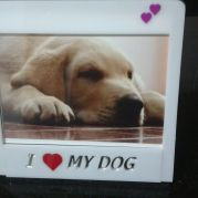 "Porta retrato ""I Love My Dog"""